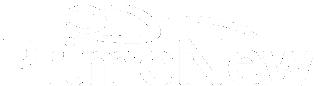 PRIMENEW Logo